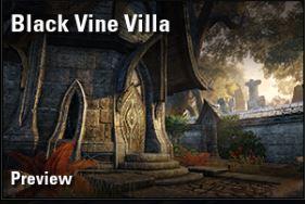black vine