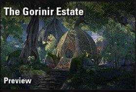 the gorinir state